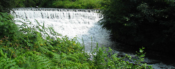 The Weir at Quarry Bank